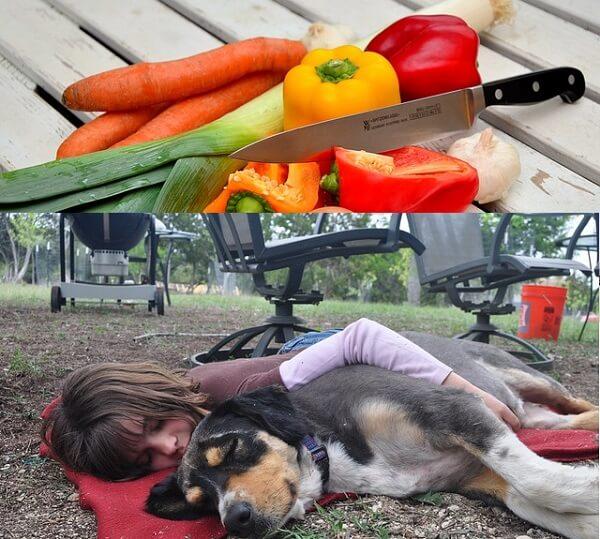 Uyku Getiren Yiyecekler
