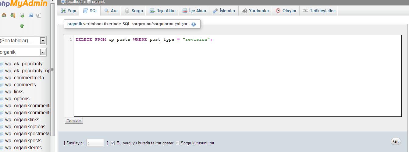 Wordpress Database Temizleme