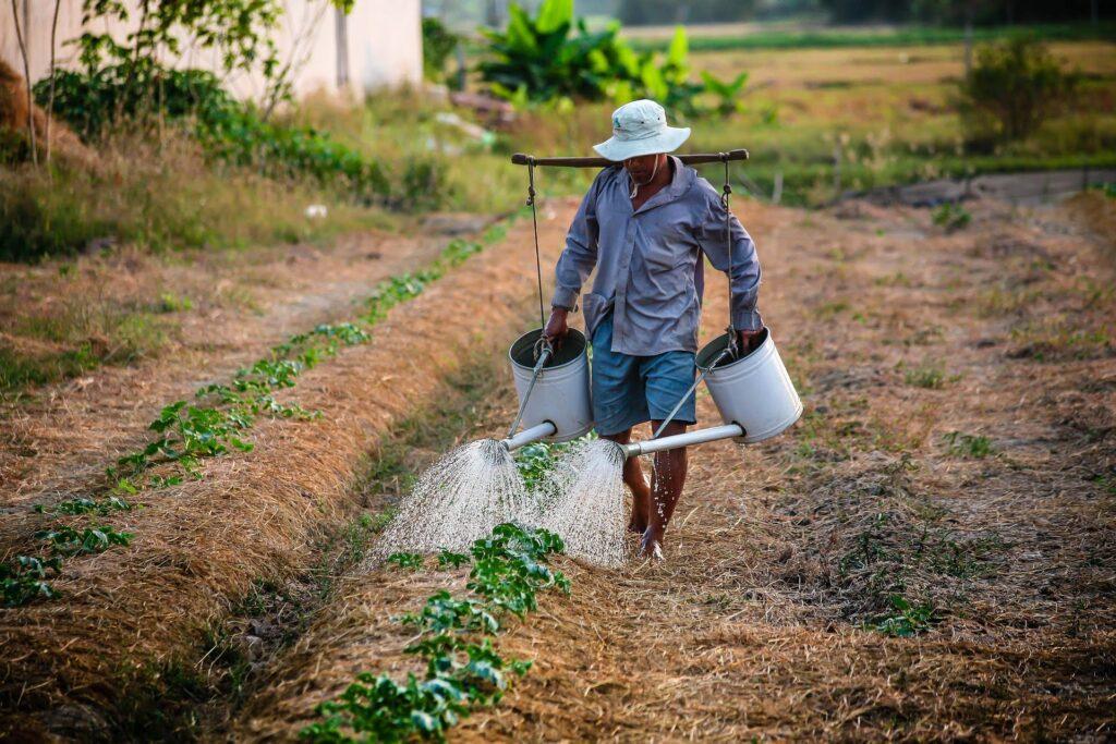 Çiftçi Kazanıyor mu 2020 2021