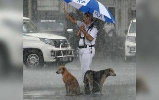 Polis, Şiddetli Yağmur Fırtınası Sırasında Şemsiyeyi Sokak Köpekleriyle Paylaşıyor